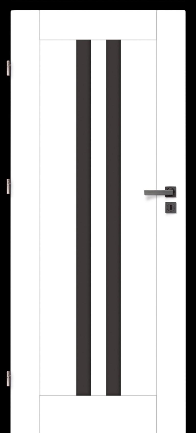 Drzwi z przeszkleniem Mediolan 10 szkło grafit | Wrocław